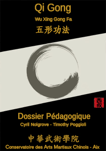 cours-formation-Wu-Xing-Gong-Fa-aix-camc