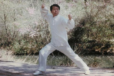 kung-fu-aix-style chen maitre jung 1