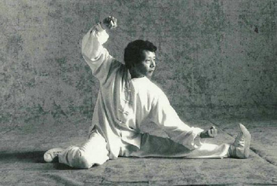 kung-fu-aix-style chen maitre jung 5